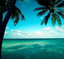 Fiji Scenery by Studio