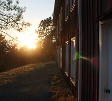 Behind the old barn by schjlatah
