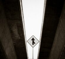 Which Way to the Airport by Kory Trapane