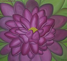 Nymphaea alba in pink by Marinella  Owens