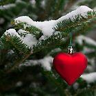I Love Winter by Mark Van Scyoc