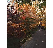 High Line NYC in the Fall by downtowndesigns