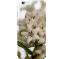 Coastal Beard Heath iPhone Case/Skin