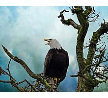 Eagle Art - Character Photographic Print