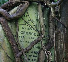 Gravestone in Highgate cemetery by Alastair Humphreys