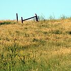 The Lonely Fence by tdeuel98