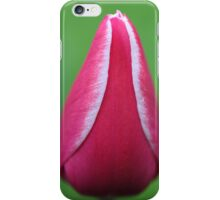 Tulip with dew drops 2 iPhone Case/Skin