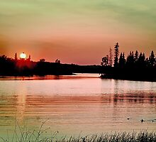 Caddy Lake, Whiteshell Provincial Park, Manitoba by Vickie Emms