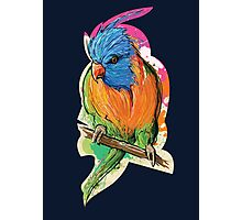 BIRDZ Photographic Print