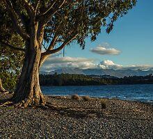 Trees by the lake by Bruce Reardon