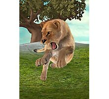 Hunting Lioness Photographic Print