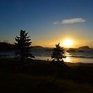MacKenzie Beach, Tofino BC by Jeff Ashworth & Pat DeLeenheer