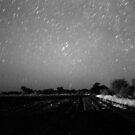 star rain with grain by Gideon du Preez Swart
