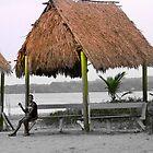 Warmth And Protection In Bocas Del Toro, Panama by Al Bourassa