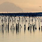 Clyde Timber Ponds & Dumbarton rock 2 by David Hutcheson