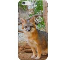 Grey Fox iPhone Case/Skin