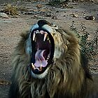 Yawn by JeZzLe