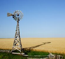 Windmill in Wheatfield by Patrick Czaplewski