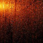 Wheelhouse Droplets by Milgate Asher