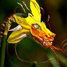 Dragon flower by sparrowdk