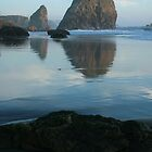 Sea Stacks - Meyers Creek Beach - Oregon by Harry Snowden