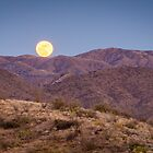 A Catalina Full Moon  by Robert Kelch, M.D.
