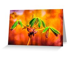Dance Of Fire Greeting Card