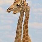 Giraffe - Symmetrical Same by LivingWild