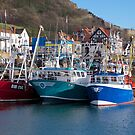 Working Harbour. by John (Mike)  Dobson