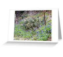 Cacti and bluebonnets sharing space Greeting Card