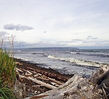 Vancouver Island Beach by David Friederich
