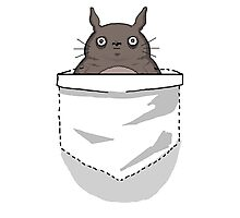 Creepy Pocket Totoro Photographic Print