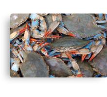 Crab Festival Canvas Print