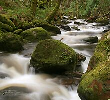 Torc River by Donal Lyne