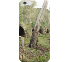 A few of the 80 Beehive Kilns at Newnes Historic Ruins, Blue Mountains. N.S.W. iPhone Case/Skin