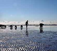 Mudflat Hiking by Jo Nijenhuis