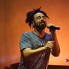 The Counting Crows by Kyle Jerichow