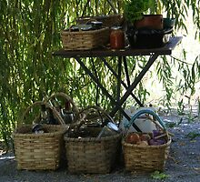 Under the willow tree by suesouthern