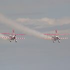 wing walkers 2 by carlawool