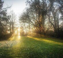 Sunset by Traven Milovich