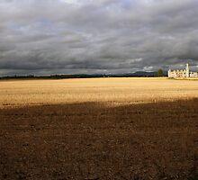 Ducketts Grove Castle autumn view by John Quinn