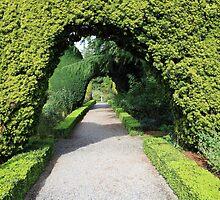 Altamont Gardens by John Quinn