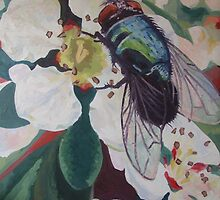 Blue bottle fly by emma schmitt