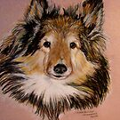 """Jammers"" Portrait Of A Sheltie by Susan Bergstrom"