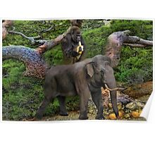 ☝ ☞WE GO 2GETHER LIKE BANANA AND PEANUTS PICTURE/CARD☝ ☞ Poster