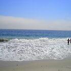 Sambro Beach by Doreen