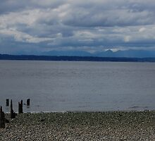 Seattle beach, looking west. by JasonW