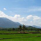 Nha Trang - Vietnam by Hieu Nguyen