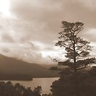 Maroondah Reservoir from Selovers Lookout by Jacqueline  Murphy