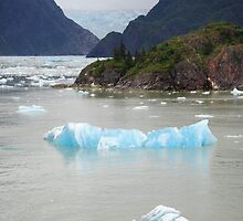Blue ice in Tracy Arm by julie08